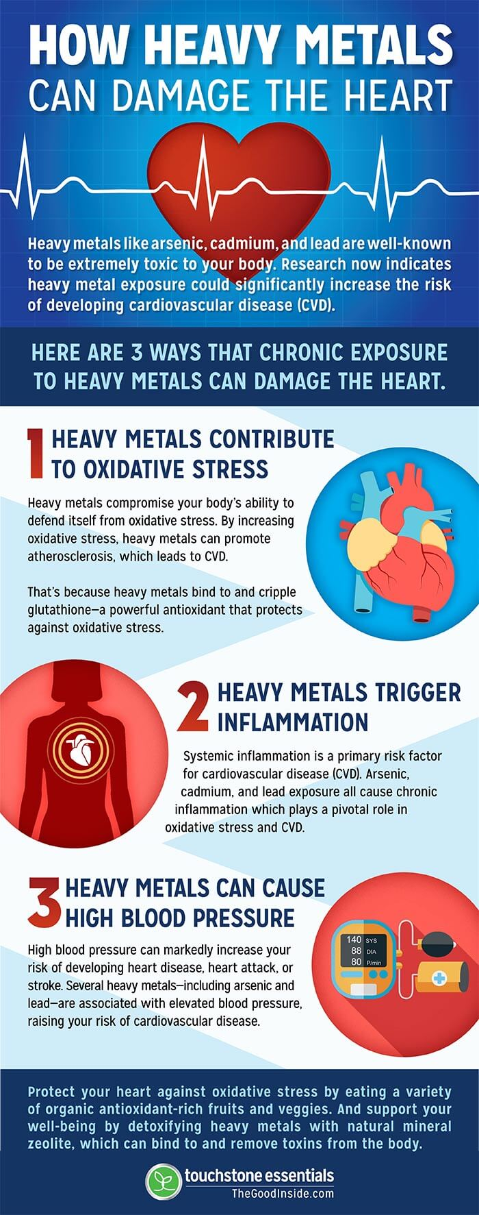 How Heavy Metals Can Damage the Heart