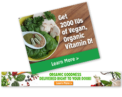 Nutrition Web Banners